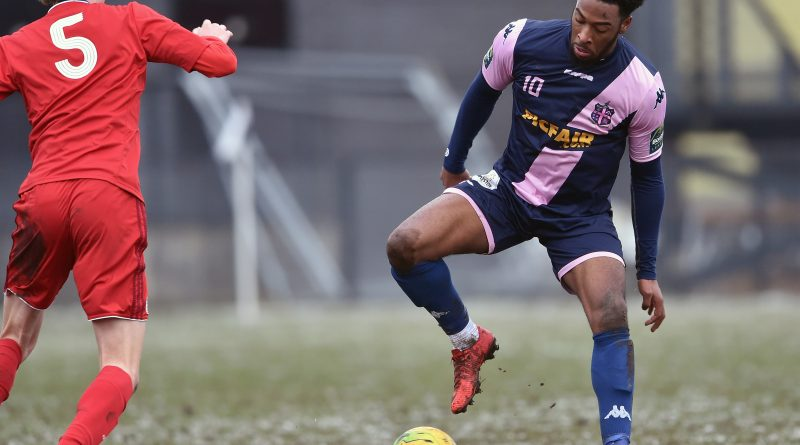 Ten players re-sign for Dulwich Hamlet – with more of squad set to follow suit