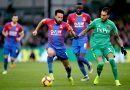 Best league in the world? Different words come to mind when you think about Crystal Palace's top-flight campaign