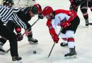 Ice-hockey: Adam Wood on hitting 100-point mark for Streatham