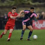 Dulwich Hamlet training schedule played part in Nathan Green's departure