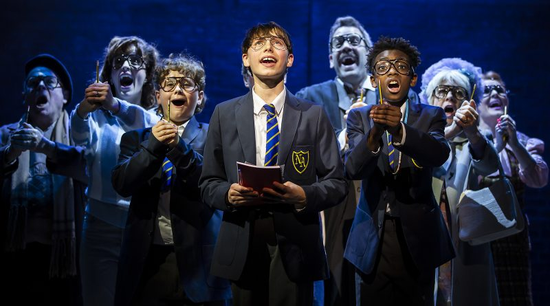 Theatre:  Secret Diary of Adrian Mole Aged 13 3/4