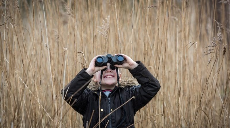 Days Out: BBC Autumnwatch Experience at London Wetland Centre, SW13