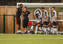 Non-league round-up: Dulwich Hamlet drawn against Havant & Waterlooville in FA Cup but Tooting knocked out by Poole Town