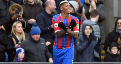 Crystal Palace 1 Newcastle 0 – Patrick van Aanholt goal seals deserved victory for Eagles